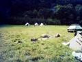 Zeltlager 1981_26