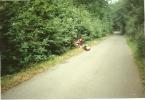 zeltlager-1998-023