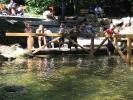 zeltlager-2004-081